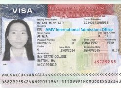 Visa du học sinh AMV International